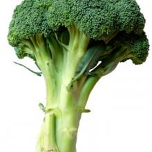 Broccoli_tillagg