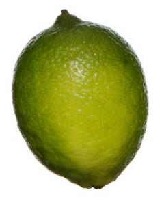 Lime_skola