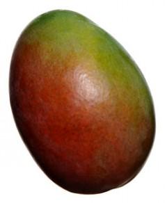 Mango_skola