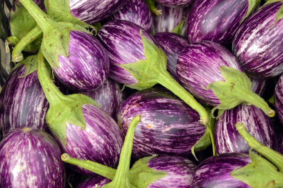 eggplant-3758698_1920