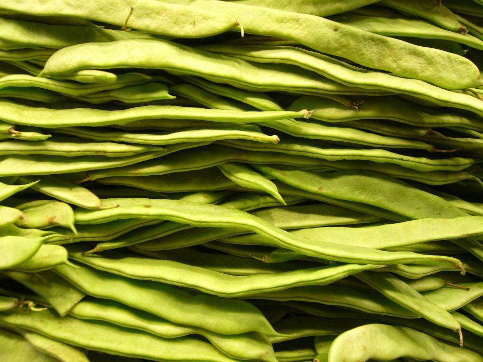 beans-4785_1920