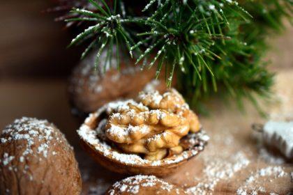 walnut-3815513_1920