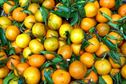 fruit-3864132_1920