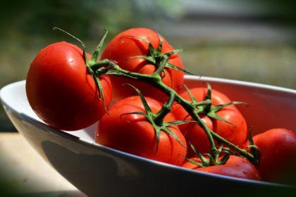tomatoes-3544442_1920