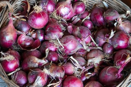 onions-5577027_1920