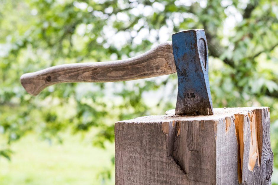 wood-3075862_1920
