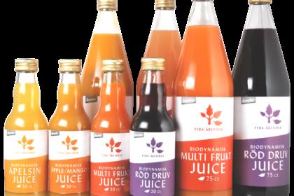 Gruppbild fyra årstider juice