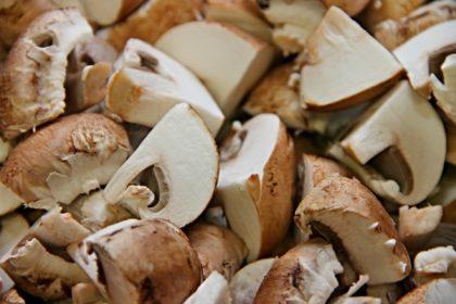 mushrooms-3209263_1920