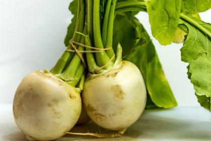 turnip-5231857_1920-4