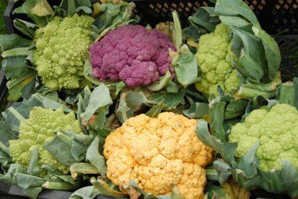 cauliflower-59097_1920