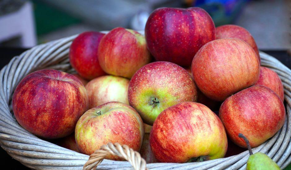 apples-5567884_1920