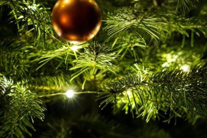 christmas-2015729_19201