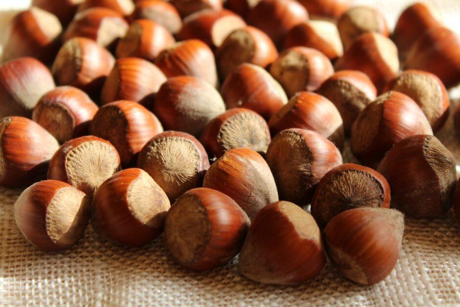 nuts-4542581_1920