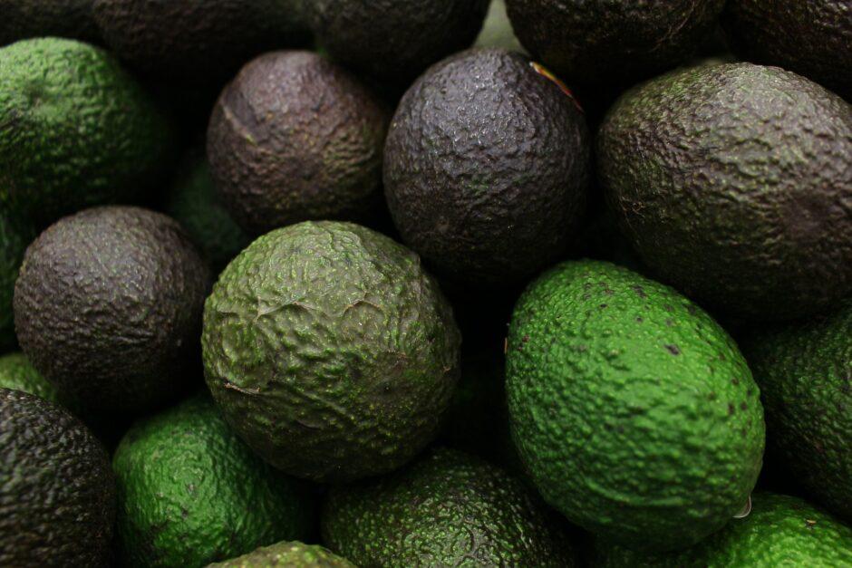 avocado-5318910_1920