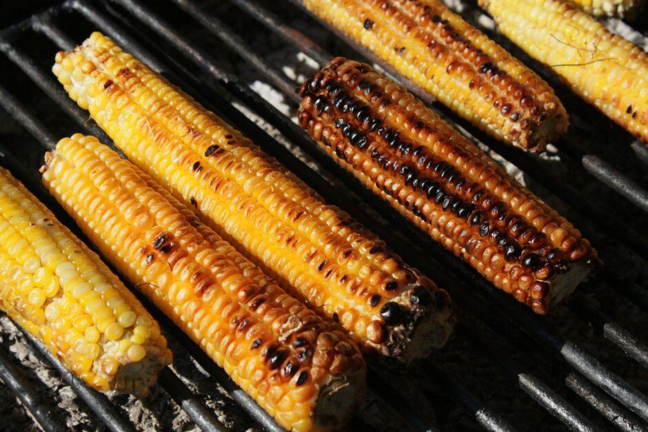 barbecue-87422_1920