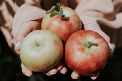 Kryddigaäpplen
